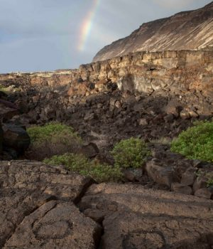 12 rainbow over turtle petroglyphs Hawaii