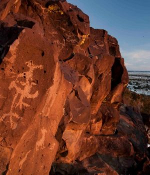 13 10 bird petroglyphs, New Mexico