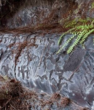 18 extensive petroglyphs in Hawaiian cave