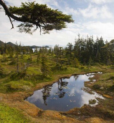 24 Prince William Sound, Alaska