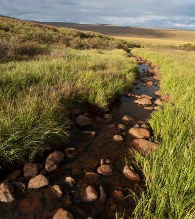 26 tundra stream