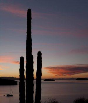 29 desert meets ocean, Baja