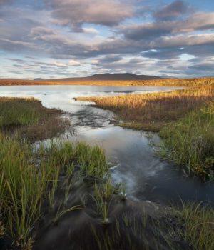 6 inlet stream, tundra lake, fall
