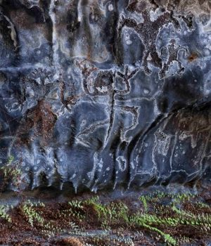 7 ornate petroglyphs inside little-known Hawaiian cave