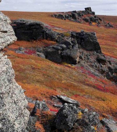 Arctic Tors in Fall